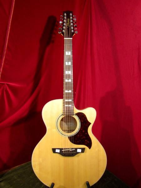 """Für die 12"""" Liebhaber http://www.bimbammusikinstrumente.de/index.php/gitarren-a-baesse/293-takamine-eg-523sc-12-string-"""