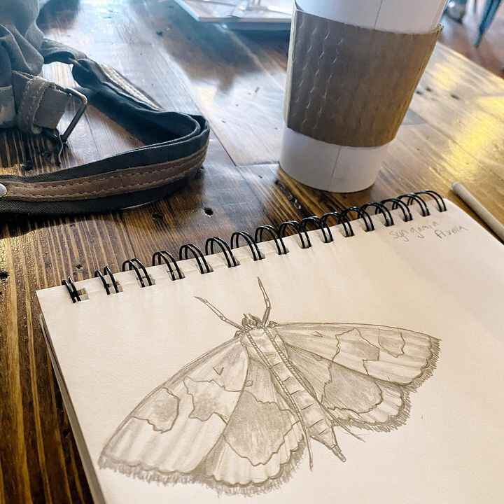 """Coffee shop doodles ❤️I already have a """"line up"""" of pieces that I'm working through so I can't start a new piece at the ..."""