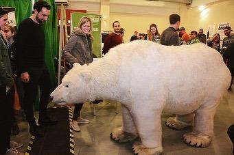 Eine informative und ebenso erlebnisreiche #greenworldtour Messe 🌳🌞 #februar2020 @kulturhaus_arena_stuttgart .. VA 👉 @au...